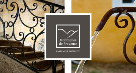 Montagnes de Provence - Univers de marque / Conception / Interface UI/UX